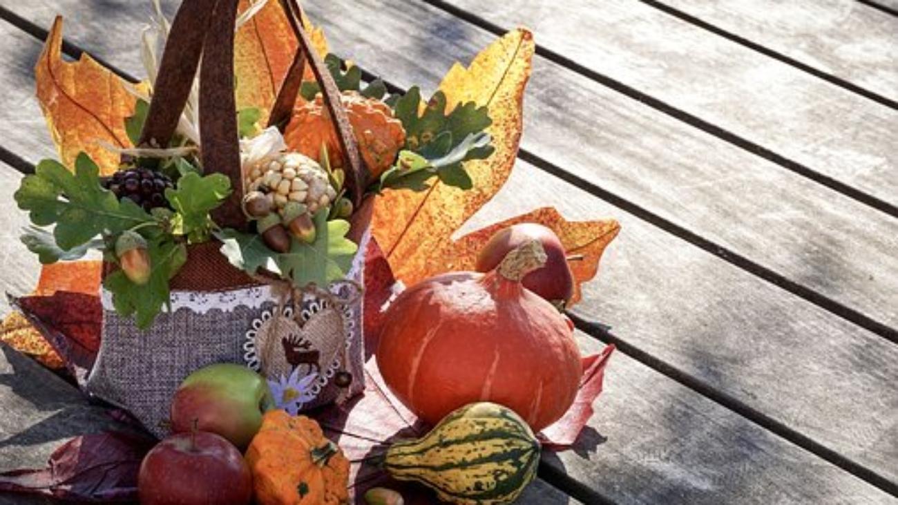 autumn-3691926__340