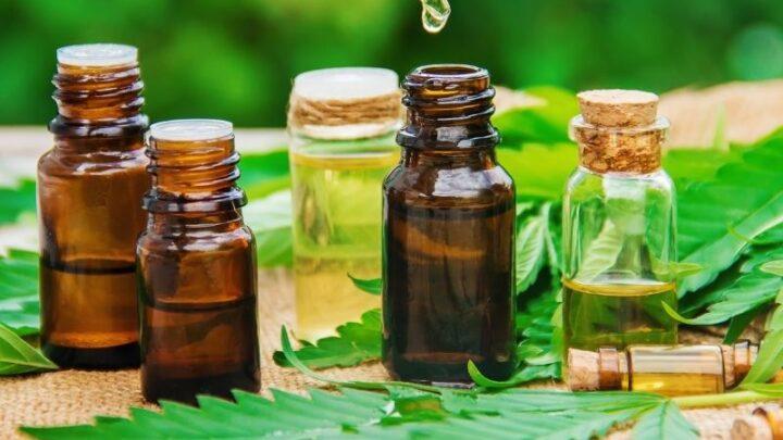 Dlaczego warto stosować oleje CBD? Zalety olejków konopnych
